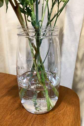 100均プラスチック花瓶